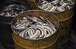 Newly forged aluminum horseshoes wait to be trimmed and have nail holes punched.